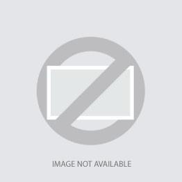 Delco Retro Metal Cooler